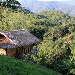a cottage ...
