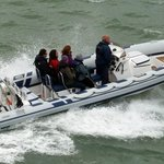 Powerboating with Onboard Charters, Portsmouth