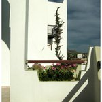 Alianthos balcony