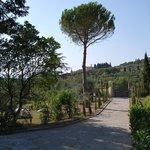 Particolare giardino e vialetto accesso