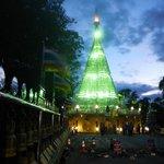 Chedi Thaimongkhon T1815