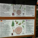 Good information about the forest