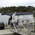 The small tourboat  for spotting and snorkeling with the manatees