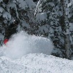 DEEP POWDER DAYS!