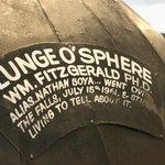 Plungosphere