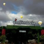 Photo of Coffeedocia