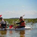 Kayaking through the silent, pristine mangroves.