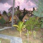 jardins et bungalows