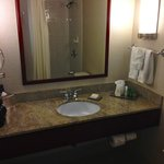 Bathroom with large bathtub/shower stall