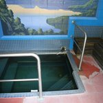 The thermal bath