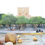 Fountains and garden