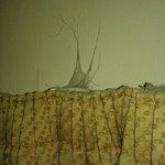 Tela de araña de principios del siglo XIX