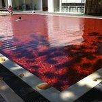 Ünlü kırmızı havuz