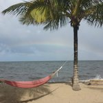 Swinging enjoying the rainbow over the ocean