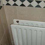 paint off radiator
