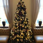 Christmas Tree in the Reception area
