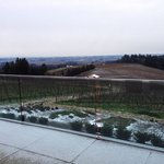 What a great view with a little dusting of snow at a great winery.