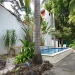 Nice garden with immaculate pool