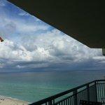 pelicans over beach