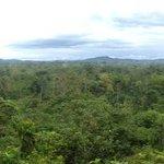 Uitzicht van viewpoint