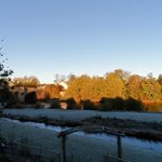 One cold and frosty morning : 10 November 2013