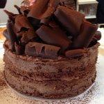 Chocolate Sponge Celebration Cake
