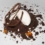 Coffee and chocolate crumble with panacotta ice cream