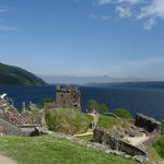View of Tower and Lochness, looking east!