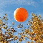 The Orange Balloon