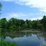 nice little lake, pond?