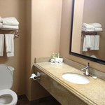 Foto de Holiday Inn Express Hotel & Suites Katy