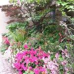 Un angolo del giardino in primavera