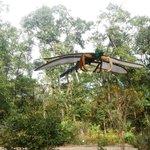 Arboretum Sculpture