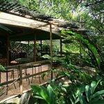 Gardens and teak house terrace