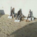 cartelli per nidi di tartarughe marine