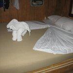 Arrumação da cama.