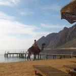 Уединенный и очень спокойный в утренние часы пляж