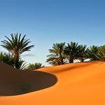 Happy Morocco Tours
