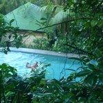 vue d'en haut de la piscine
