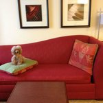 Puppy Sofa : )