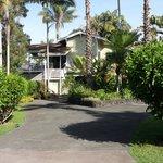 Entrance to Areca Palms