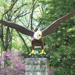 The eagle near the park entrance
