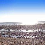 Beach in December
