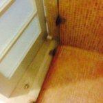 shower floor hinges