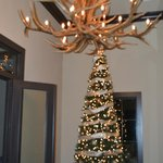 In Grand Entrance @ the new Event Center. Beautiful antler Chandilier