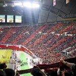 Consadole Sapporo-fans