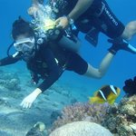 Carmel at another scuba diving experience in Eilat