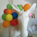 Birthday Party in the villa