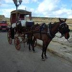 Pferdetaxi in Valetta