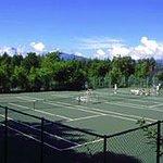 ジョナサン専用テニスコート